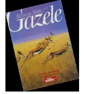 Rok: 2000 - Najbardziej dynamiczne stado w Polsce